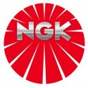 NGK ITR5F-13