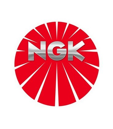 NGK RACING COMPETITION R7437-8 4901