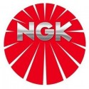 NGK LASER PLATINUM PFR6X-11 5757