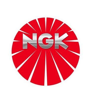 NGK LASER PLATINUM LTR6BP13 94806